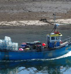 China Is a Land of Opportunity for Scottish Seafood