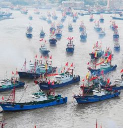 China Will Cut the Size of its Fishing Fleet