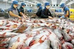 Vietnam's Pangasius Sales to China Up 76% in 2016; Could Pass US as Top Market in 2017