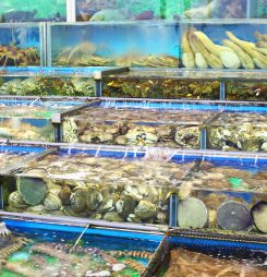 China Cuts Tariff Rates on Large Range of Imported Seafood