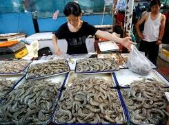 Thailand Now Exporting Live Shrimp to China by Air, Facilitated by Rapid Customs Clearance