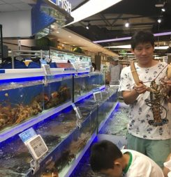 Hema Fresh Opens Second Store in Shenzhen; Imported Seafood Can Arrive in Two Days